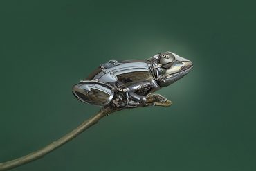 frog | Photo manipulation | Sulaiman Almawash