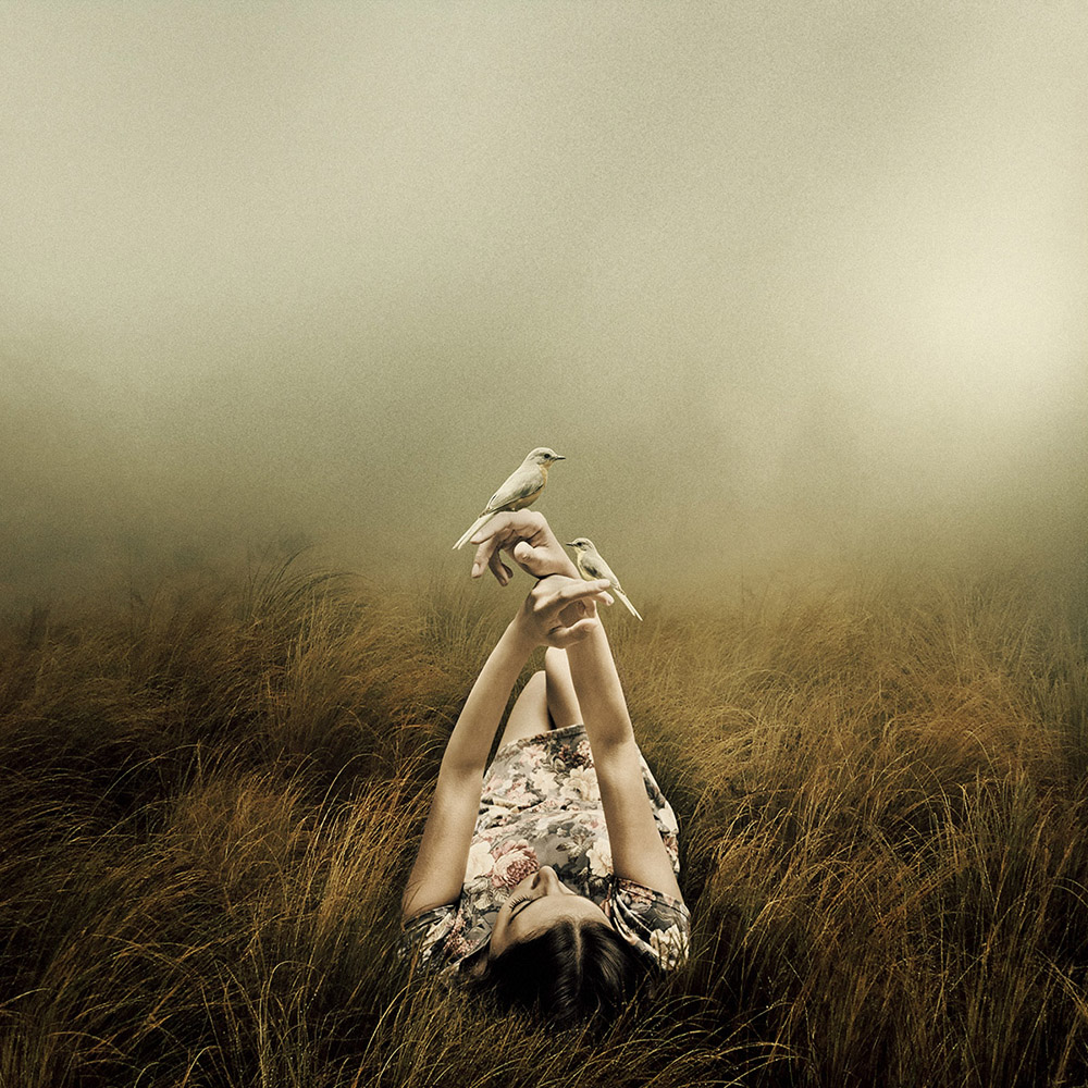 Far From The Rivers | Martin Stranka