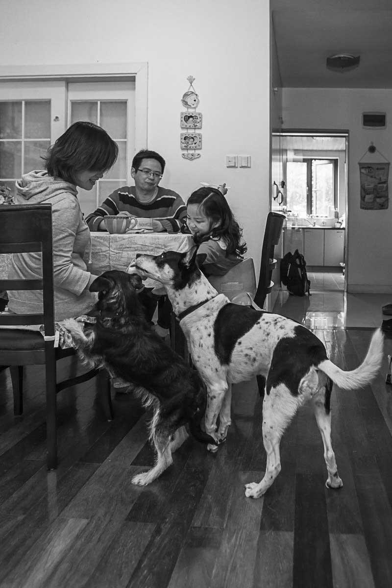 Joachim-Feigl_mom-dad-dog-7