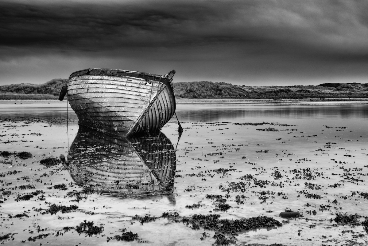 Light and landscape | Trevor Cole