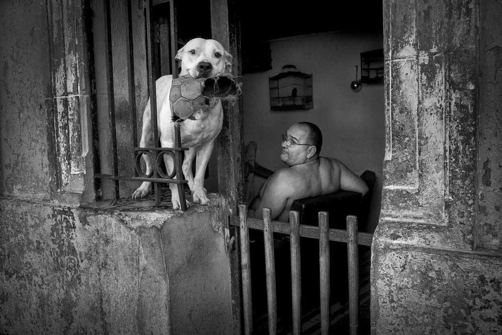 Havana |  David Saxe
