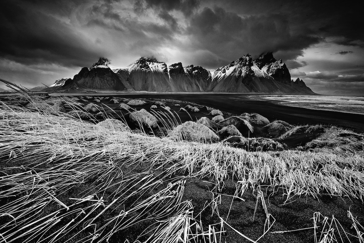Light and landscape | Trevor Cole