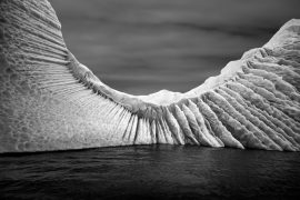 Ernest H. Brooks II Winged Wall, Antarctica, 2010 Archival pigment print 16 × 20 inches © Ernest H. Brooks II