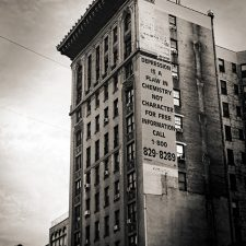 nyc-landscapes37