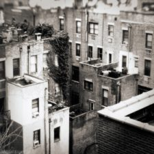 nyc-landscapes63