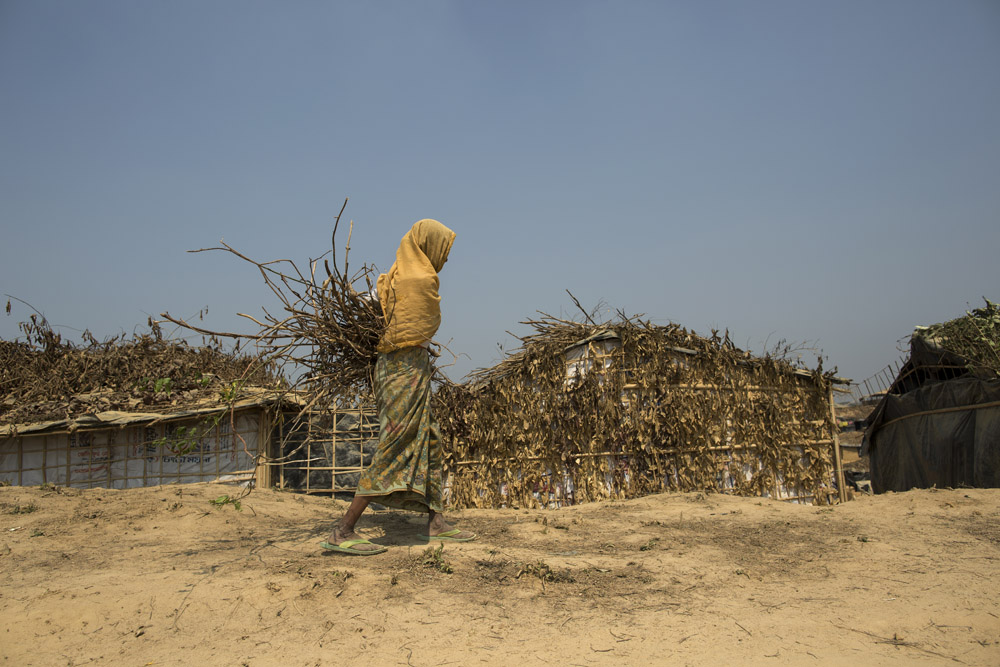A Rohingya woman returns to her makeshift home after collecting firewood.