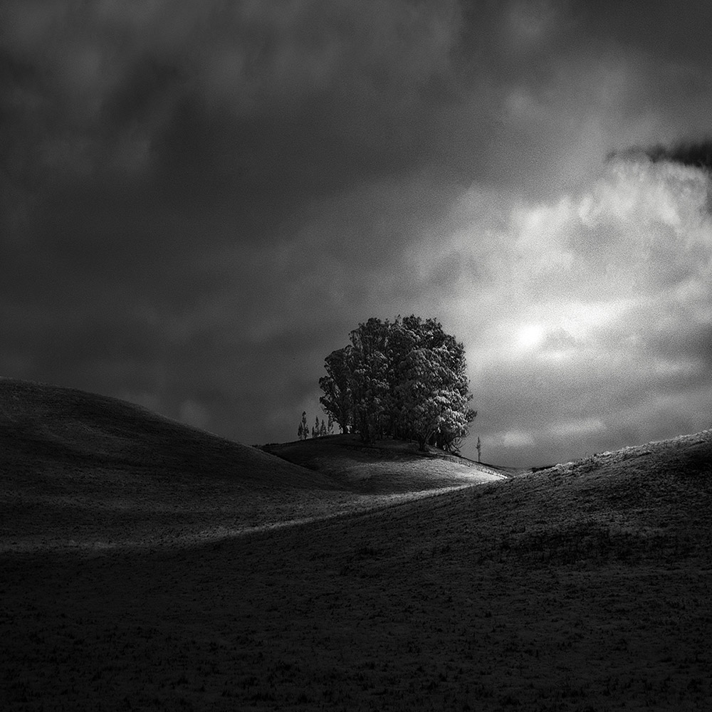 Infrared Silence Series | Nathan Wirth