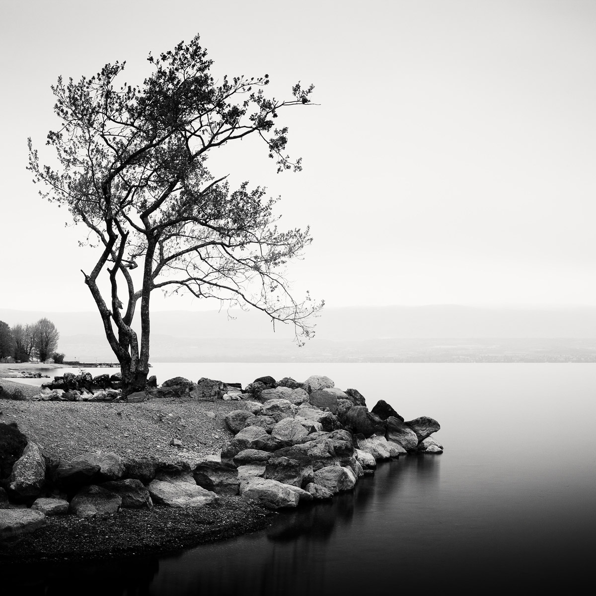 Léman | Olivier Robert