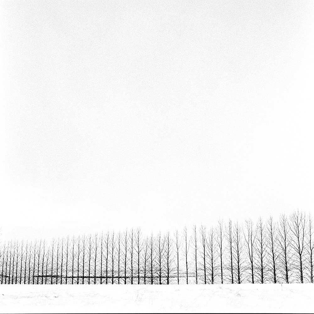 Silence | Vassilis Triantis