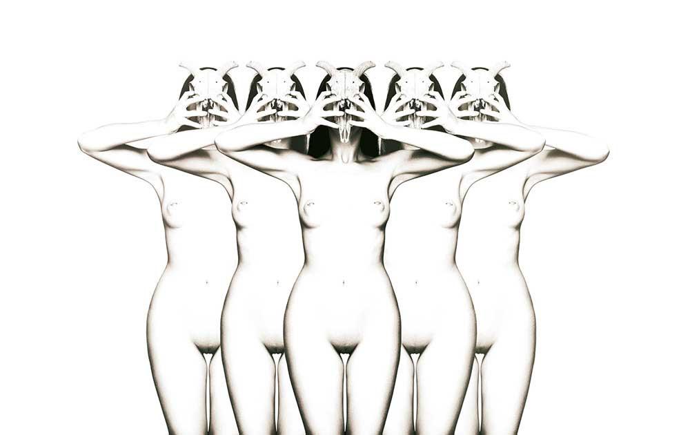 Skull   Photo Essays   Antonio Peinado