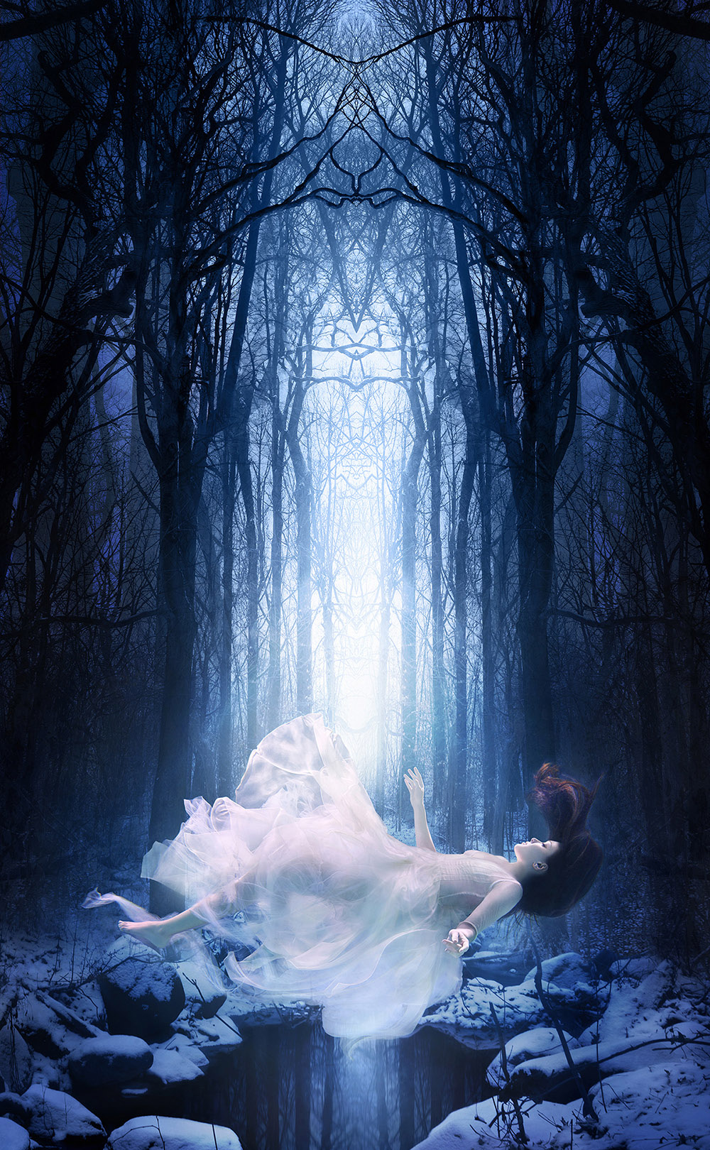 Snowdrop | Michael David