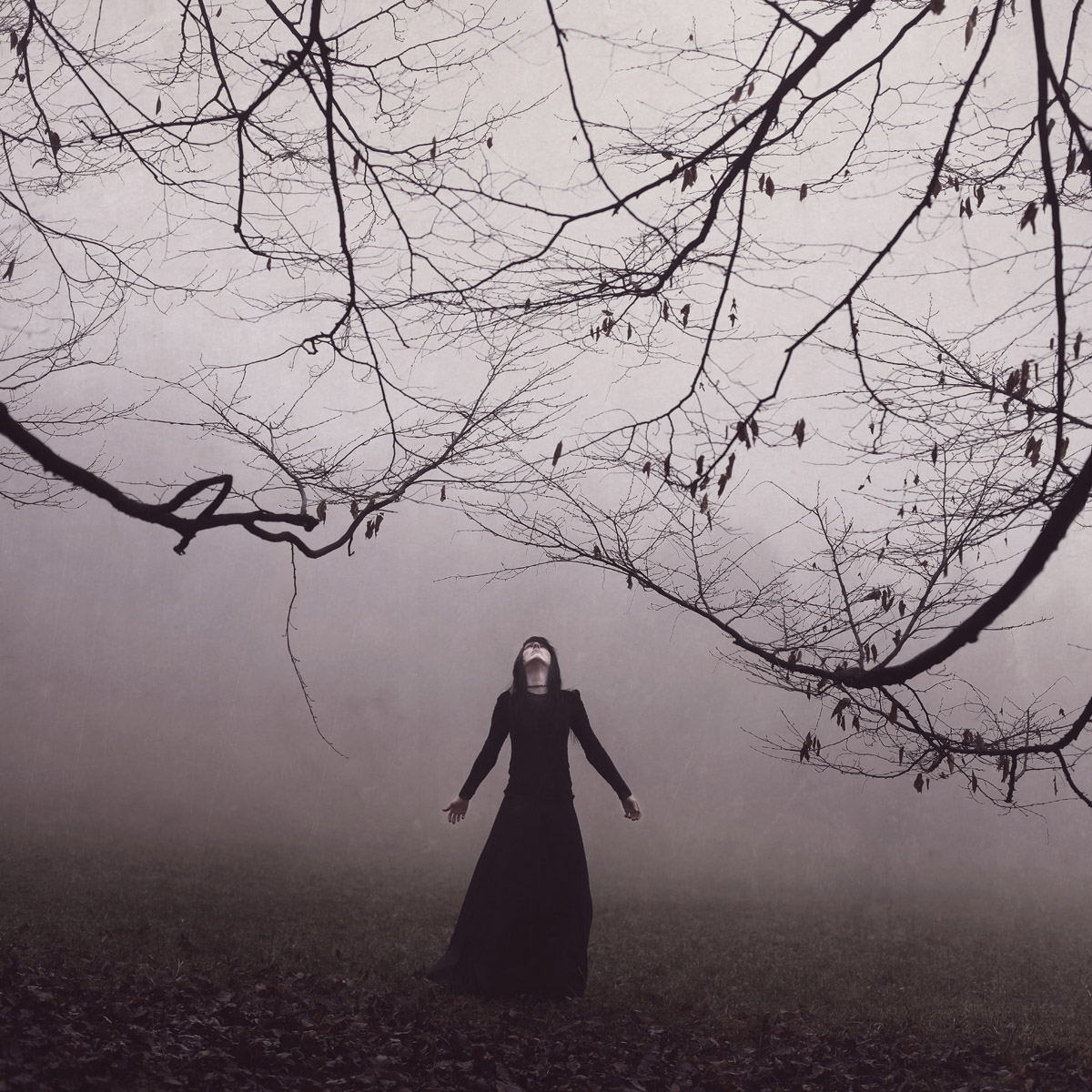 Veins in my body | Anja Matko