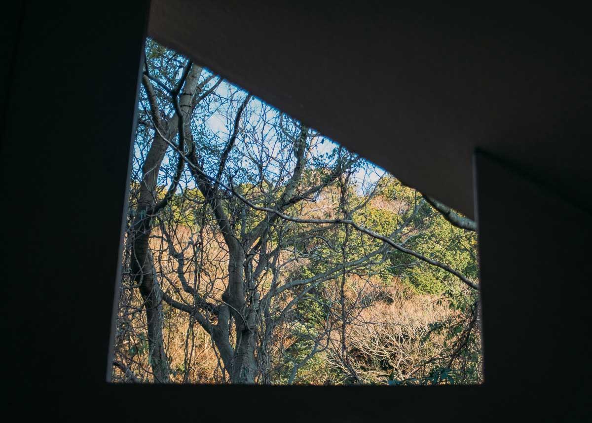 Home Away | Deb Schwedhelm