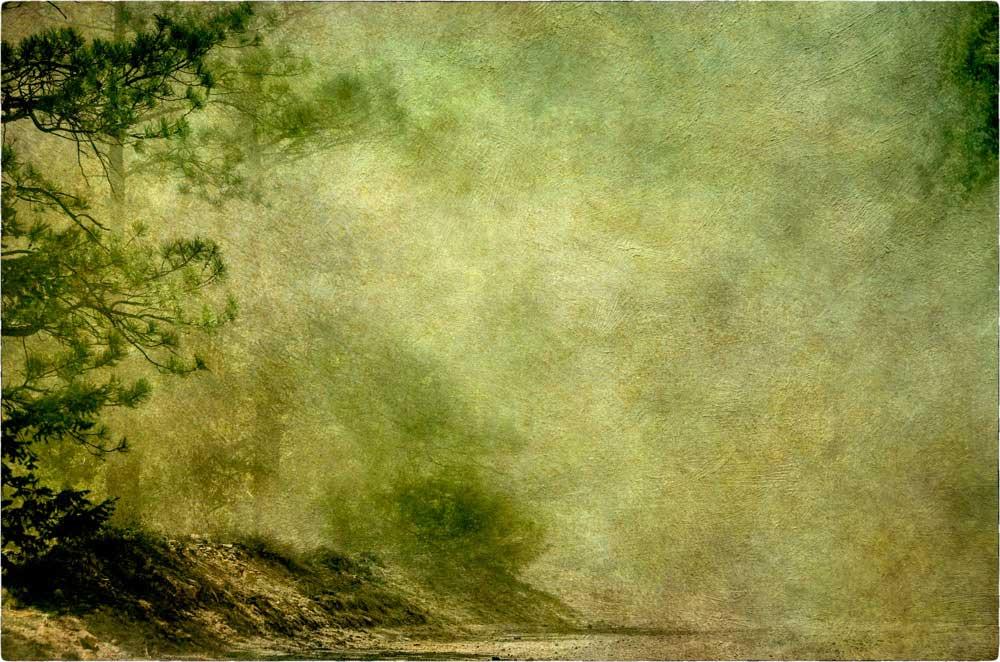 States of Grace | Wendi Schneider