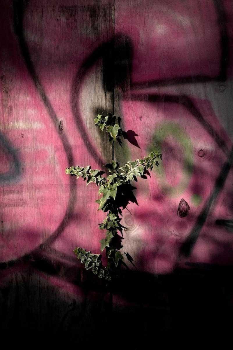 Subtopia | Adrian Saker