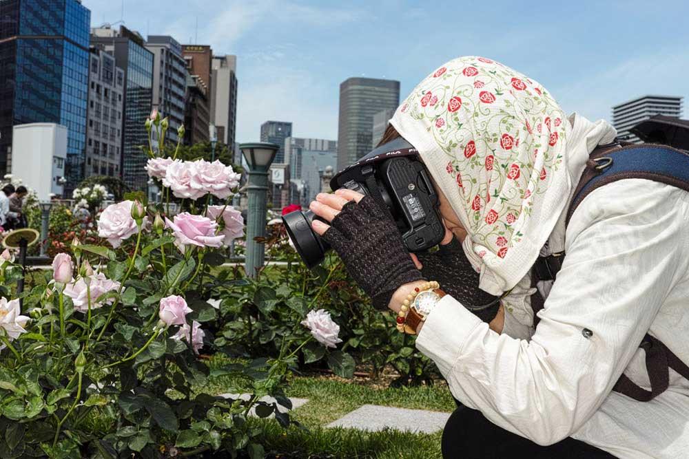Rose Garden by Takayuki Narita