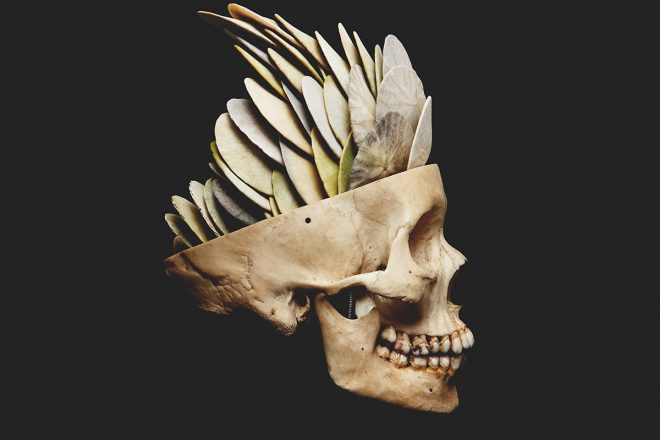 Anthropocene by David Ellingsen