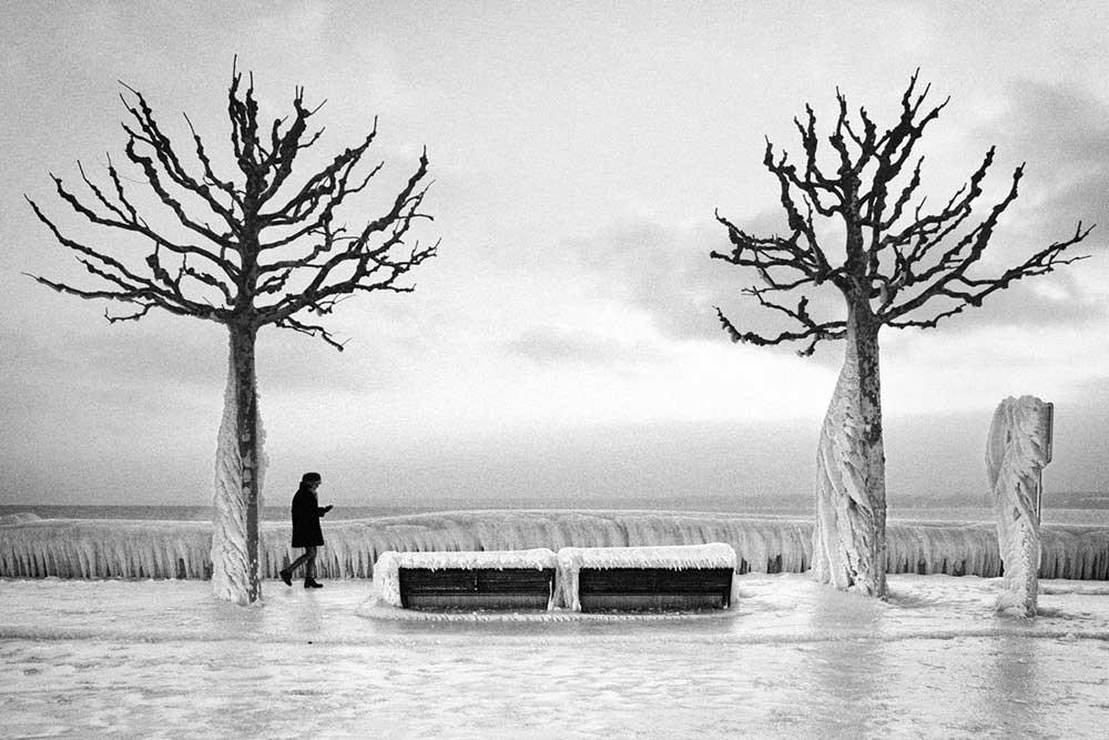 Frozen by Romain Tornay
