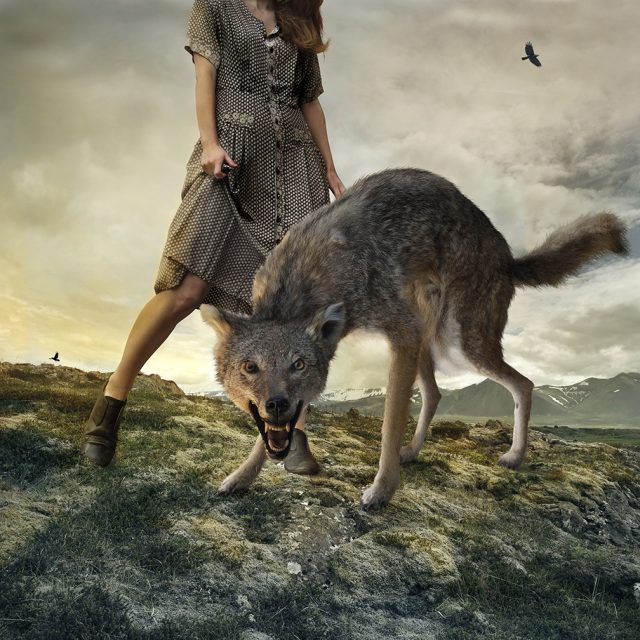 Still Beating by Tom Chambers