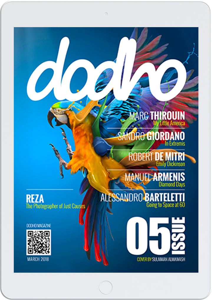 https://www.dodho.com/wp-content/uploads/2018/03/dig05.jpg