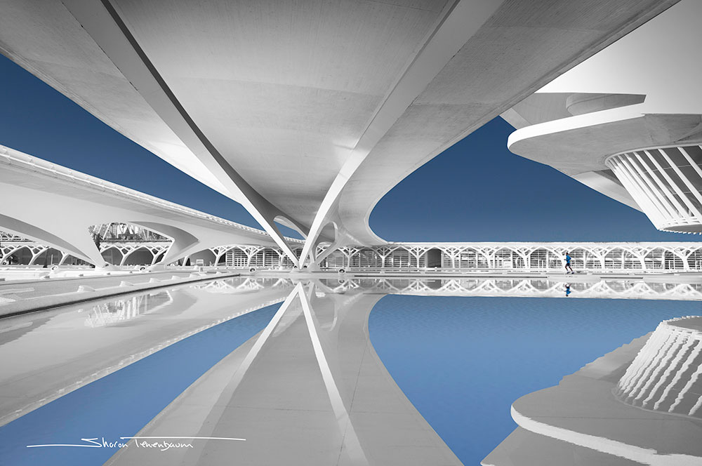What Makes a Great Fine Art Architectural Photograph? by Sharon Tenenbaum