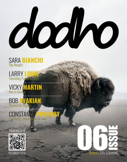 https://www.dodho.com/wp-content/uploads/2018/12/cover6-PRINT-copy-430x547.jpg