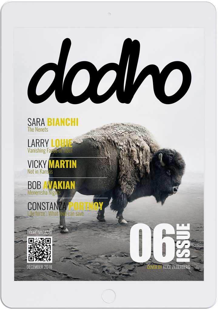 https://www.dodho.com/wp-content/uploads/2018/12/di06-1.jpg