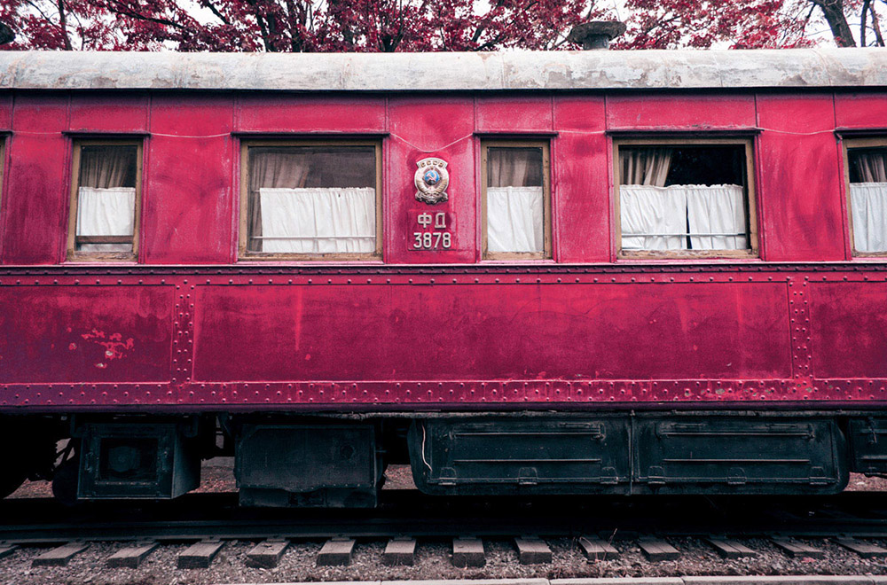 The Great Red Paranoia by Revaz Kacharava
