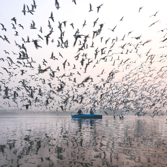 Yamuna: The Other Side of the Bank by Jai Thakur