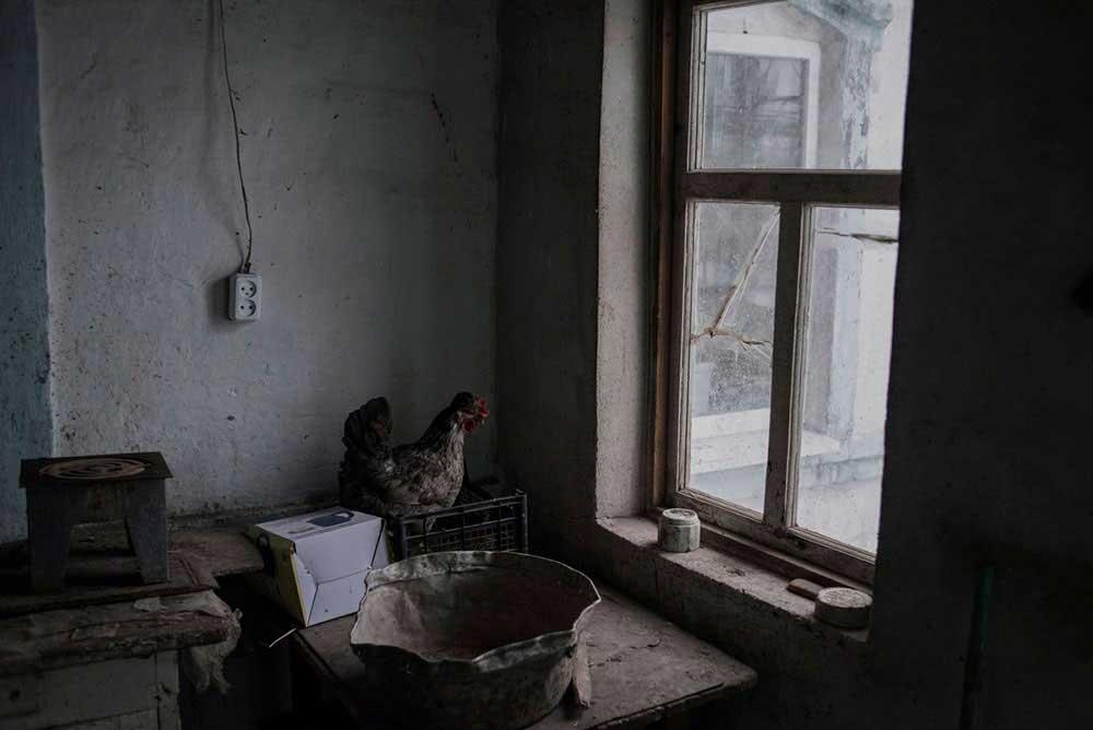 Gray zone | Valery Melnikov