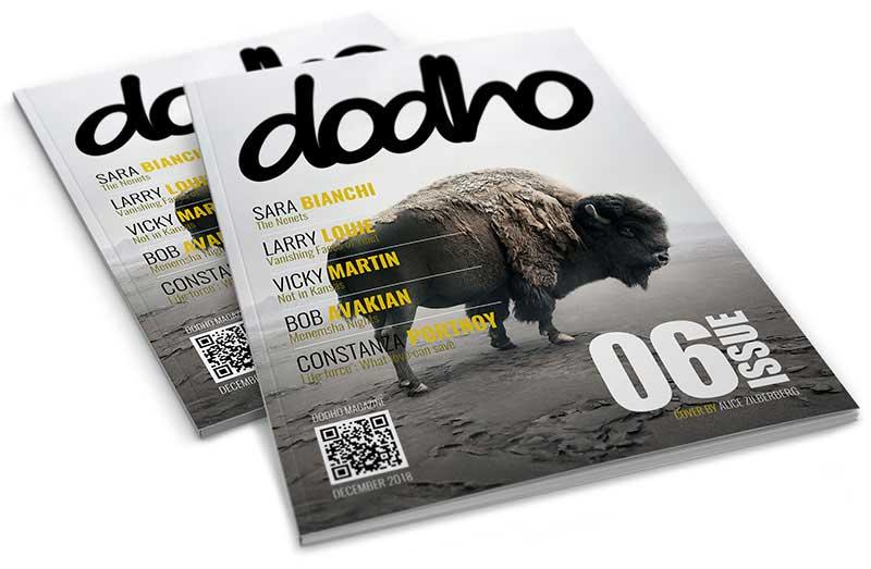 https://www.dodho.com/wp-content/uploads/2019/06/06-2.jpg