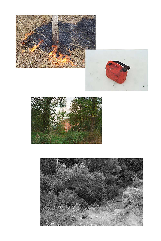Pyromaniac | Maria Kokunova