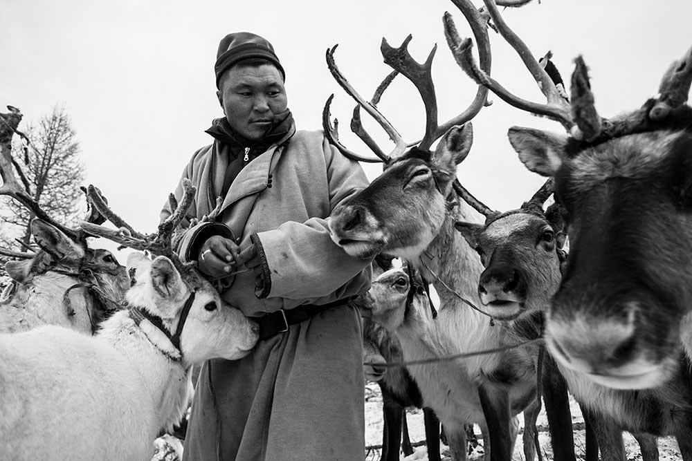 Tsaatan - The last reinder tribe | Matteo Maimone