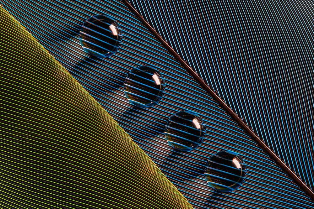 Aquabeads | Bruno Militelli