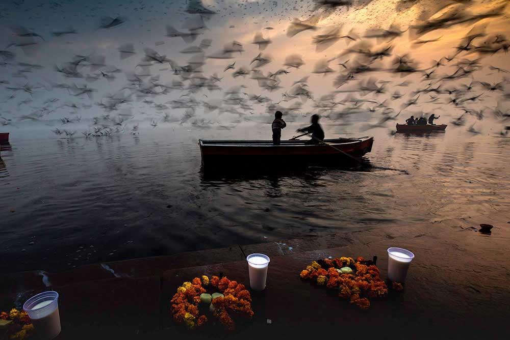 Death flows, hope floats, life flies by Sankar Sridhar