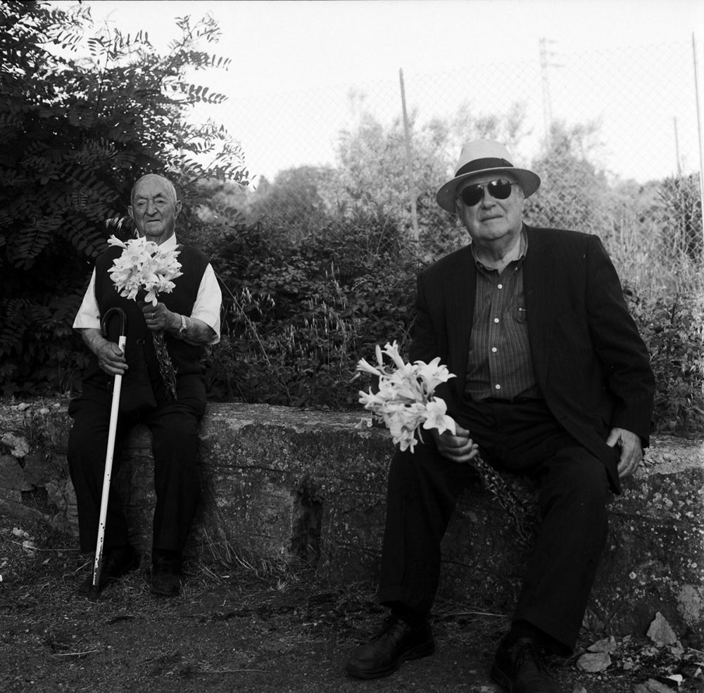 A Thousand Lilies | Margrieta Jeltema