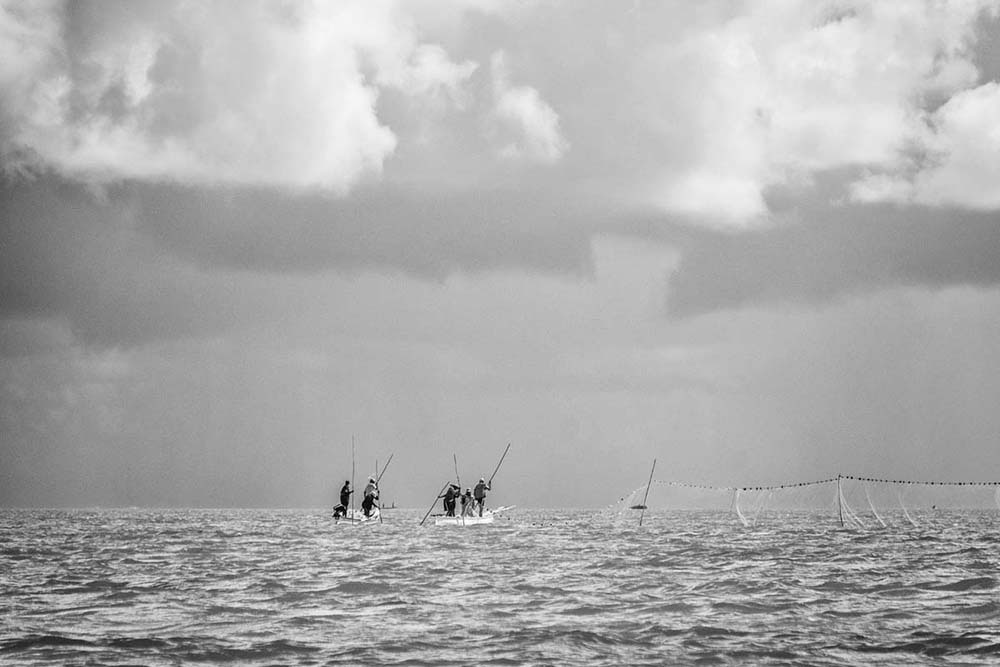 Net fishing in Rodrigues island | Pascal Lagesse