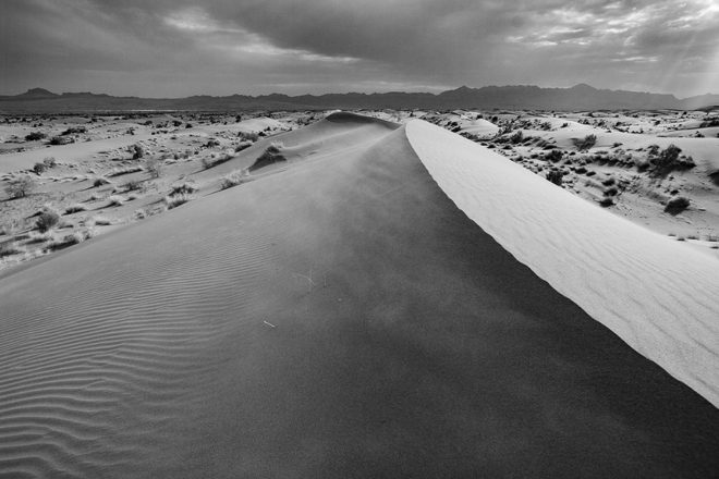 Desert : Shadows of silence by Basim Ghomorlou