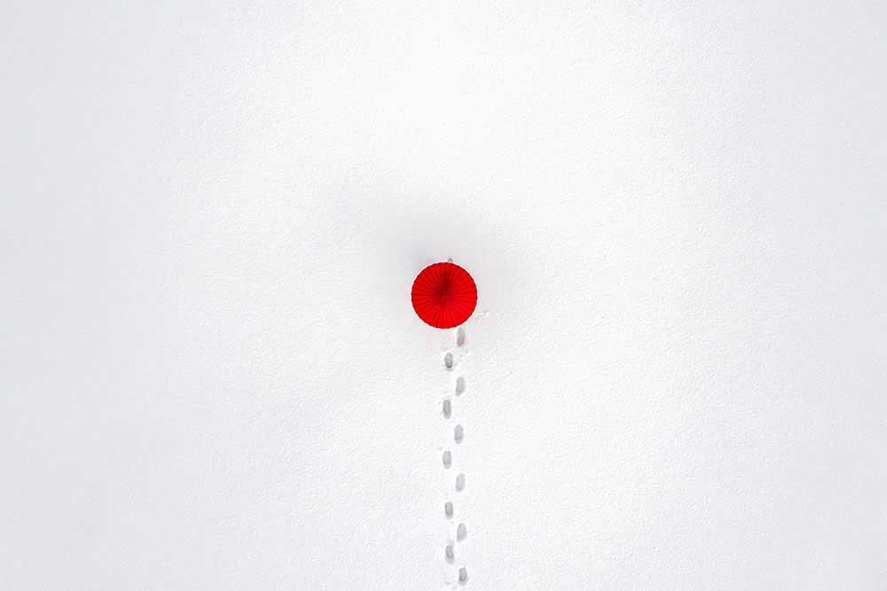 Japonism & Minimalism by Atom