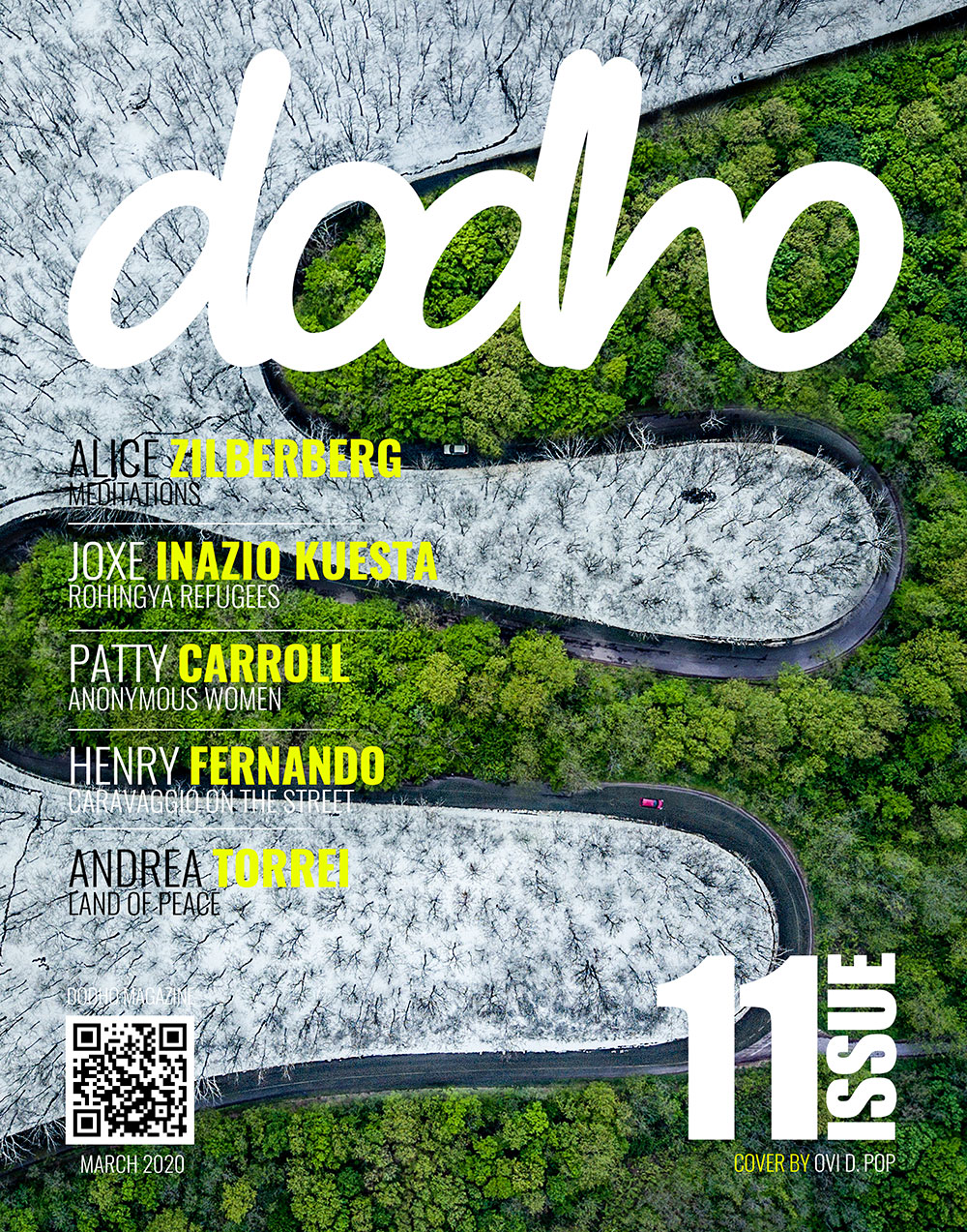 https://www.dodho.com/wp-content/uploads/2020/03/cover11.jpg