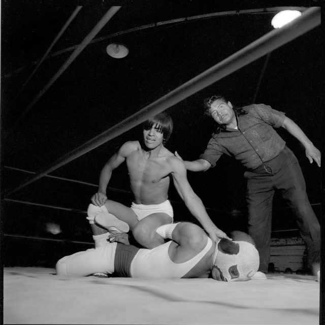Lucha libre by Avery Danziger
