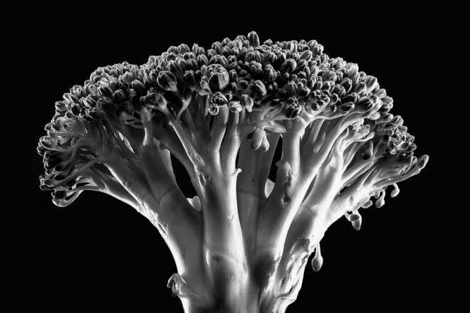 Bizarre portraits of food by Gregoris Mentzas