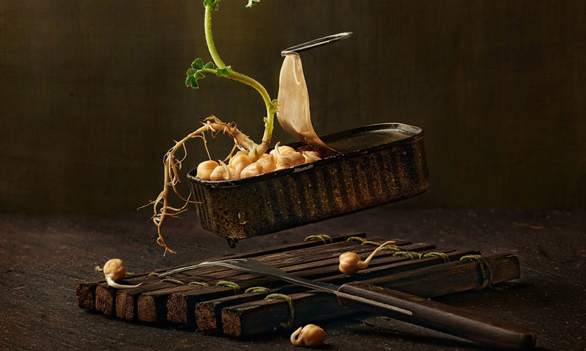 Germinating by Wesley Dombrecht