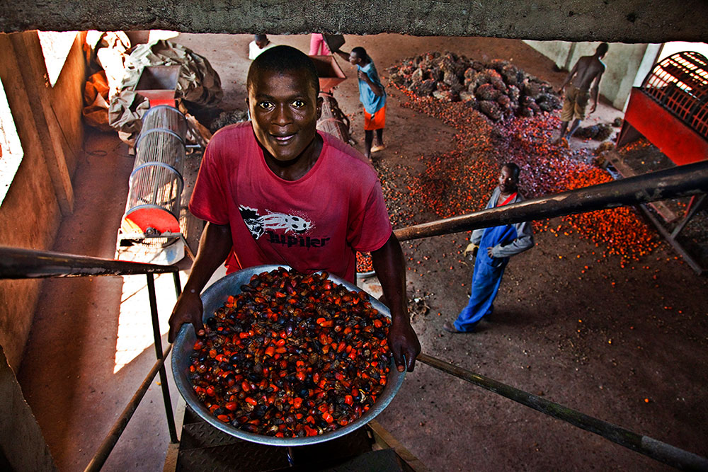 Palm oil production in the Central African Republic Gibi Peluffo
